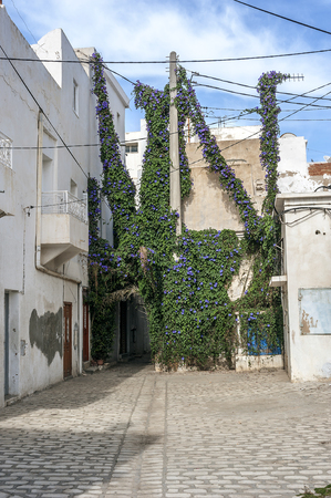 Tunisia, Sousse. The streets of the old city (Medina), paved with natural stone. Stock Photo