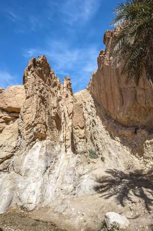 Tunisia, near the town of Towser. The oasis of Shebik is surrounded by barren plains, hot mountains and desert. Stock Photo