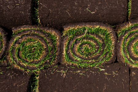 Rolls of fresh grass turf ready to be used for gardening Reklamní fotografie - 36633176