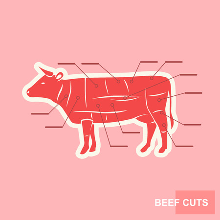 Poster Cut of beef set. Butcher diagram Cow silhouette. Gentle stylized poster for groceries, meat stores, butcher shop, farmer market. Vintage typographic Vector illustration