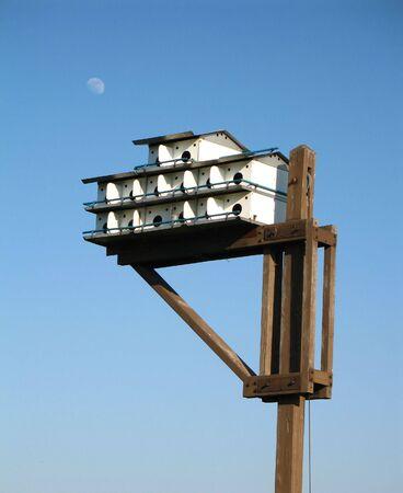 Grand oiseau blanc condo Banque d'images - 431875