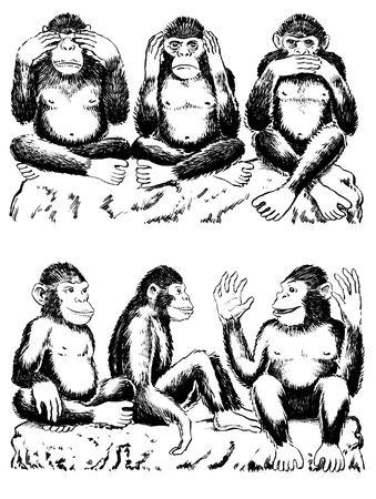 oir: Ilustraci�n de blanco y negro de tres monos actuando fuera famosa expresi�n. No ver ning�n mal, no o�r ning�n mal, no hablar de ning�n mal. Un mono tiene sus manos sobre sus ojos, uno sobre sus o�dos y otro sobre su boca. Todos sentados legged cross. A continuaci�n se presentan tres monos