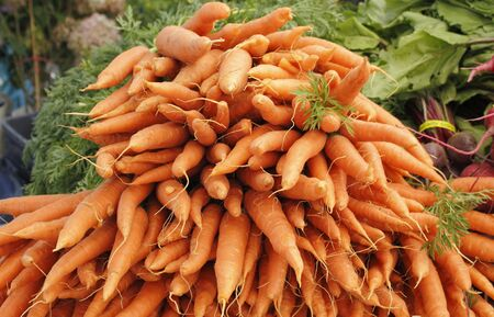 Many bright, deep colored orange carrots are displayed for sale at an outdoors Farmers Market. photo