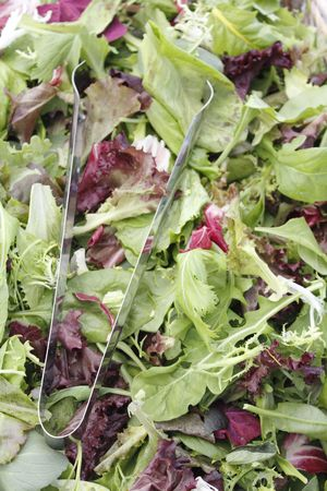 A bin of fresh mesclun salad mix for sale at an outdoor market. photo