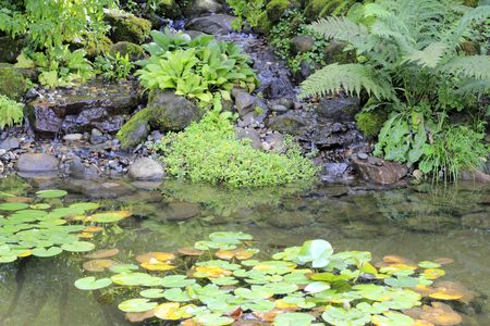 water feature: Water cascades down rocks into a tranquil place with lily pads and fish.