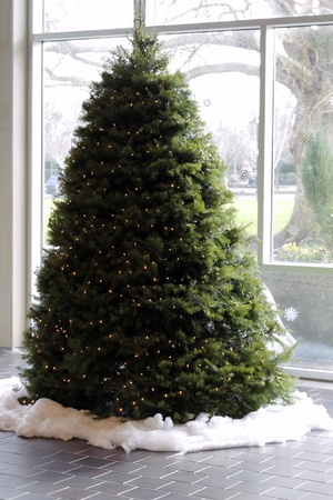 A large holiday evergreen tree with lights surrounded by cotton snow in a brightly lit lobby.