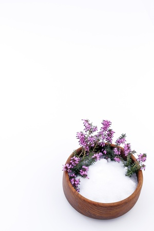 Epsom salts in a teak wood bowl with beautiful heather flowers on a vertical white background.