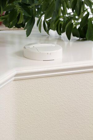 Carbon monoxide detector alarm on a home foyer house plant shelf. Stock Photo - 9884352