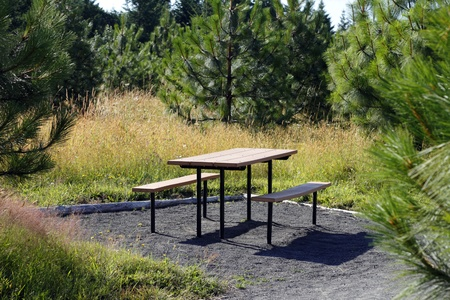 picnic table: Picnic table with benches in a private area off the main walking trail surrounded by evergreen trees during the daytime. Stock Photo