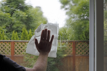 Having sprayed window cleaning fluid on the glass, a hand of a man is seen washing a sliding glass door from inside a home with a view of the green foliage backyard