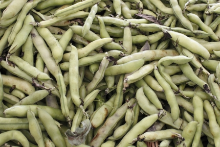 Fabaceae: Large amount of green fava bean pods for sale in a display at an outdoor market