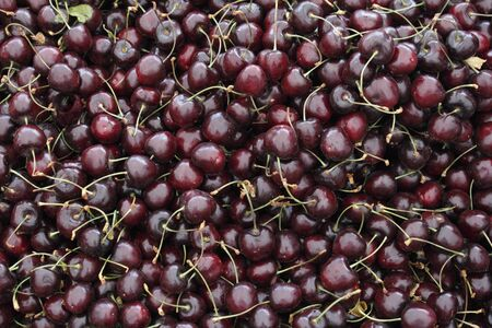 dark cherry: Background of dark red cherry stone fruits with stems still attached loose in a bin for sale at an outside farmers Stock Photo