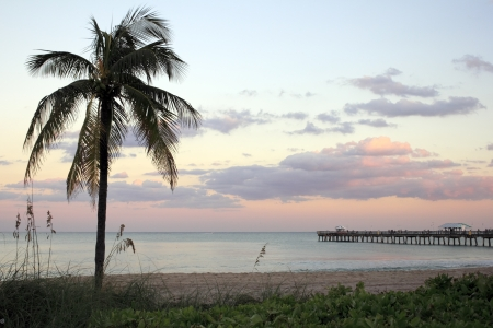 Beautiful pink, blue, purple autumn sunset on the tropical barrier island beach in Lauderdale by the Sea, Florida with a coconut palm tree on the left and Anglins Pier on the right  Stock Photo