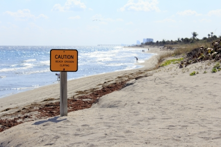 coastal erosion: DANIA BEACH, FLORIDA - JANUARY 25, 2013: Caution sign warning of beach erosion and cliffing with a view of people and nature at John U. Lloyd Beach State Park in Dania Beach, Florida.