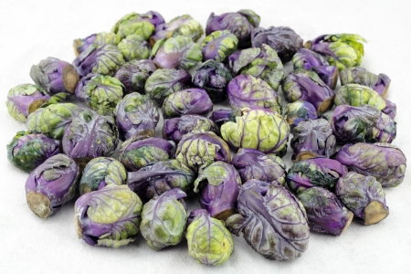 cruciferous: Pile of purple green brussels sprouts cruciferous vegetables on a white paper towel