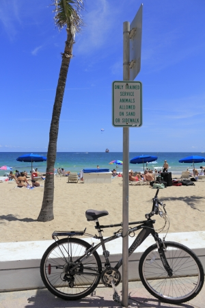FORT LAUDERDALE, FLORIDA - APRIL 8, 2013  Bike locked to a sign that says, only trained service animals allowed on sand or sidewalk, near the busy beach that has lots of people enjoying the sunny day