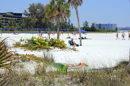 SIESTA KEY, FLORIDA - MAY 9, 2013: Many people enjoying playing volleyball in the designated athletic area of Siesta Beach, with other people relaxing nearby and residential buildings in the background.