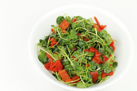 Watercress mixed with roasted red peppers sections, lemon juice and olive oil in a round white bowl  Stock Photo