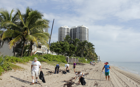 coastal: Fort Lauderdale, FL, USA - September 20, 2014: People picking up beach trash north of Oakland Park Boulevard in the yearly Ocean Conservancy International Coastal Cleanup. Editorial