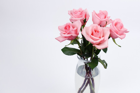 vase: Five pink roses floral arrangement with stems and leaves in a clear glass vase with a white gray background. Bouquet of pink rose flowers in a glass vase on a empty background