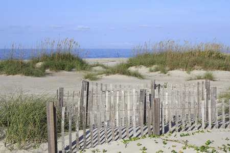 Relaxing daylight beach scene of the Atlantic Ocean coast. A small wooden fence and tall grass patch in sand dunes on a sunny day at this tranquil beach. Stock Photo