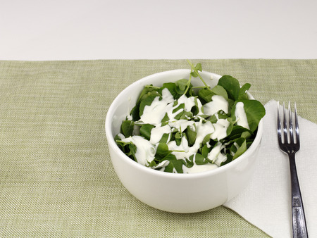 One white bowl of watercress salad with blue cheese salad dressing. Lunch of a fresh small leaf watercress salad with blue cheese salad dressing close-up. Stock Photo