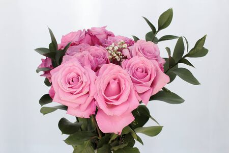 Top half of a pink rose flowers bouquet with green leaves with an off-white background. Close-up of a beautiful bouquet of pink roses with green leaves. Stock Photo