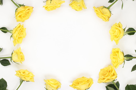 Twelve yellow roses arranged as oval frame border. Yellow roses surround the edges of white paper. Bright yellow roses with stems and leaves surround the sides of white paper as a surrounding border.