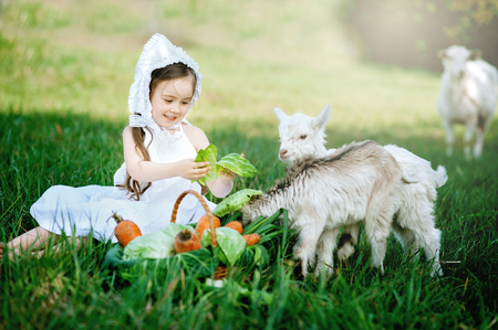 A shepherd girl in a white dress and bonnet feeds a goat with cabbage leaves. Child feeding goat in spring field