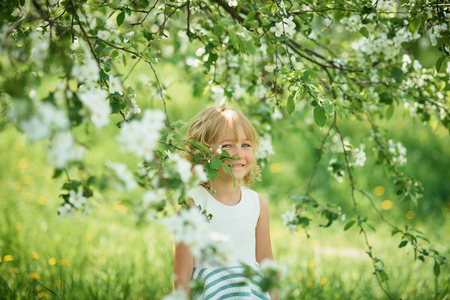 girl sniffing flowers of apple orchard. garden with flowering trees. Happy childhood. Allergy season, insects Imagens