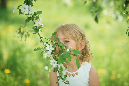 girl sniffing flowers of apple orchard. garden with flowering trees. lop-eared child. Little beautiful girl enjoying smell in a flowering spring garden