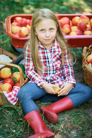 Girl with Apple in the Apple Orchard. Beautiful Girl Eating Organic Apple in the Orchard. Harvest Concept. Garden, Toddler eating fruits at fall harvest. Apple picking.