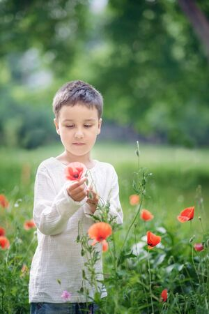Happy little smiling boy standing and smiling in poppy field. portrait of a brunet boy 5-6 years old in summer outside, Childrens day. Imagens