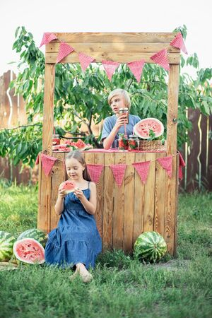 Boy and girl trying to sell lemonade. Watermelon lemonade with ice and mint as summer refreshing drink in jars. Cold soft drinks with fruit. Children drinking lemonade in jar