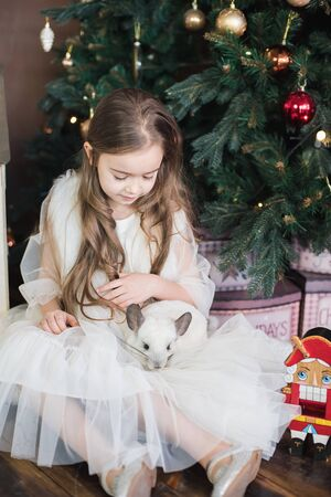 Little girl and white chinchilla. Happy Chinese New Year 2020 year of rat. symbol of new year. ballerina with nutcracker in studio Stock Photo