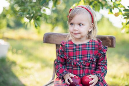 Child picking apples on farm in autumn. Little girl playing in apple tree orchard. Healthy nutrition. Cute little child eating red delicious fruit. Harvest Concept. Stock fotó
