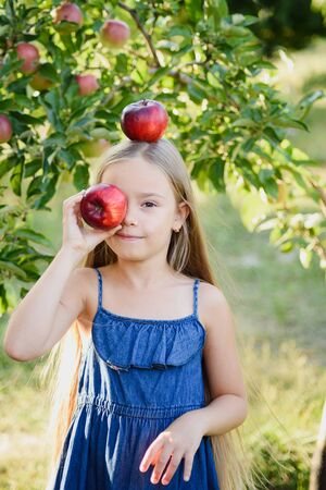 Child picking apples on farm in autumn. Little girl playing in apple tree orchard. Healthy nutrition. Cute little girl eating red delicious apple. Harvest Concept. Apple picking.