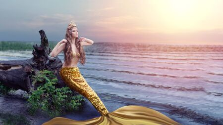 Fantasy woman real mermaid with trident myth goddess of sea with golden tail sitting in sunset on rocks.. Gold hair crown shells pearls jewelry. Mermaid sitting on shore. fantasy concept.