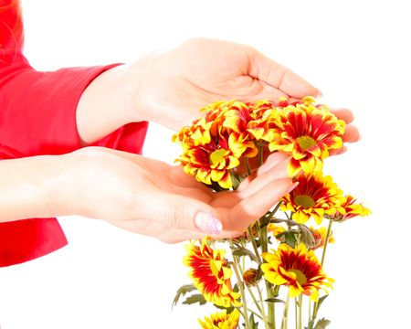 hands and flowers isolated on white photo