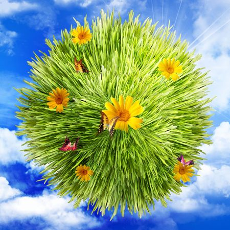 Grass, flower and butterfly on clouds background photo