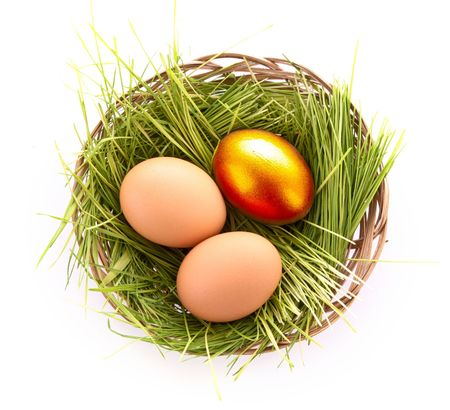 Gold  egg in nest isolated on white Stock Photo - 6279389