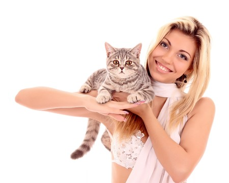 Young cat with woman isolated on white Stock Photo - 8280234