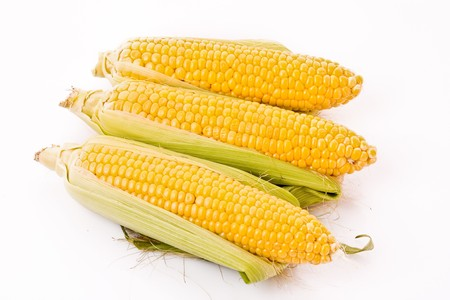 Few corn isolated on white photo