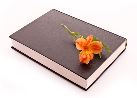 hard cover: Hard cover book with flower isolated on white
