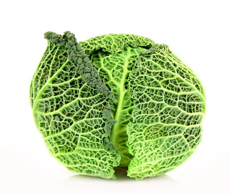 savoy: Savoy cabbage isolated on white