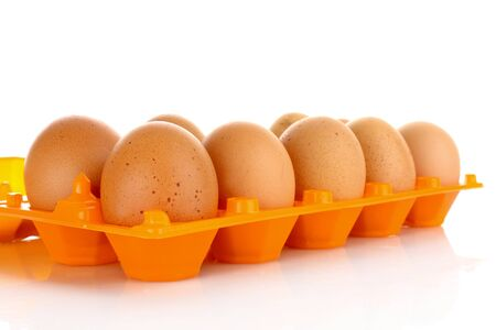 gamme de produit: Eggs in plastic box isolated on white Banque d'images