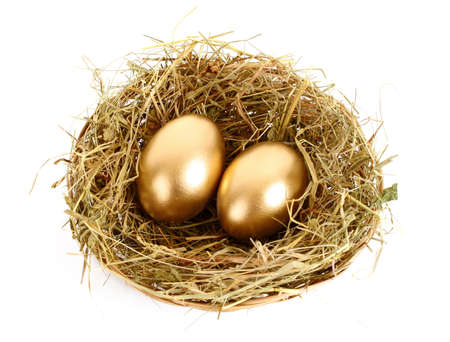 Three golden hens eggs in the grassy nest isolated on white photo
