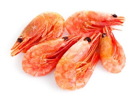 seafood platter: fresh shrimp isolated on white