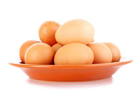 gamme de produit: Oeufs en plaque isol� sur fond blanc