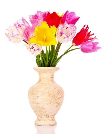 Tulips in vase isolated on white photo